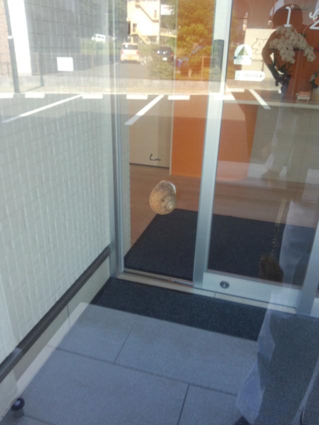 ドアを開けて再確認