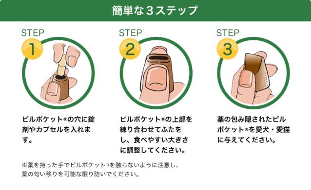 t_step